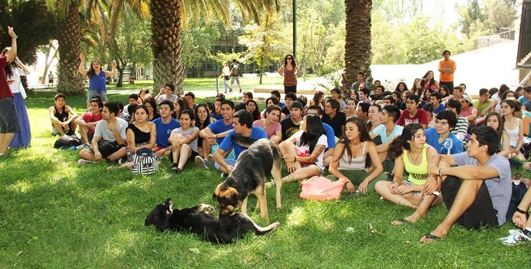 Ya es costumbre, los perros son intocables. Al fondo atrás, Patricia Arriagada, responsable del Campamento de Verano.